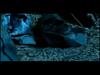 Ghostface Killah - Back Like That (feat. Ne-Yo)
