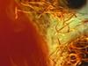 Annihilator - Set The World On Fire