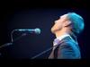 David Gray - Shine (Live)