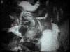 Mudhoney - This Gift