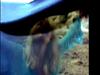 Emma Bunton - Take My Breath Away