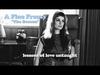 A FIne Frenzy - The Beacon (Lyrics Video)