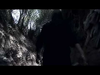 Hello Seahorse! - Bestia (Video Oficial)
