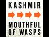 Kashmir - Mouthful Of Wasps