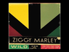 Ziggy Marley - Get Out Of Town | Wild and Free