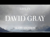 David Gray - Disappearing World