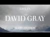 David Gray - Slow Motion