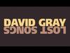 David Gray - Twilight