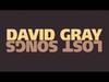 David Gray - January Rain (Instrumental)