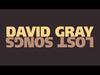 David Gray - Falling Down The Mountainside