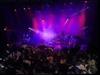 Super Furry Animals - The International Language Of Screamin (Brat Awards)