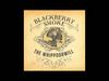 Blackberry Smoke - Pretty Little Lie (Live)