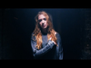 Marmozets - Born Young And Free