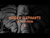 Mother Mother - Waxing Elephants' Ep 2: Brothers and Sisters