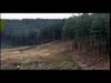 COLDPLAY - The scientist (Peter Santos lento violento rmx)