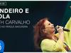 Beth Carvalho - Pandeiro e Viola (Ao Vivo no Parque Madureira) (Áudio Oficial)