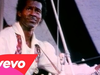 Chuck Berry - In Concert (Live)