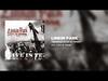 Linkin Park - Runaway (Live In Texas)