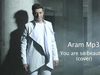 Aram Mp3 - You are so beautiful (cover)