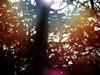 Sugarstarr - Hey Sunshine (feat. Alexander) (Antonio Giacca Radio Edit)