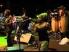Look Who's Dancing - Ziggy Marley | Live at Sacher Gardens in Jerusalem, IL (2011)