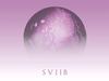 School of Seven Bells - Signals (Audio)