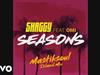 Shaggy - Seasons (Mastiksoul Island Mix) (Audio) (feat. OMI)
