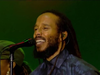 Ziggy Marley –Wild And Free | Live at Exit Festival (2018)
