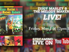 Ziggy Marley and the Melody Makers LIVE! (Full Concert Stream)
