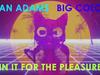 Ryan Adams - In It For The Pleasure (Visualizer)